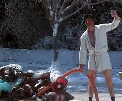 Cousin Eddie emptying the latrine