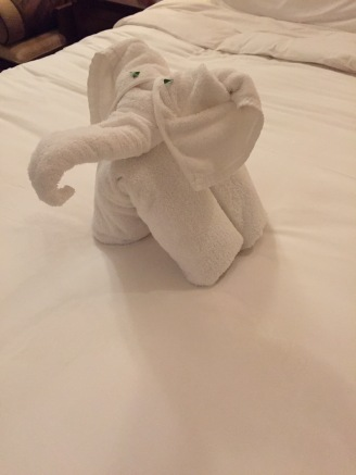 Elephant Towel Art