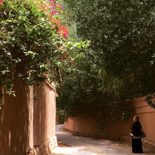 Shaded lane off the Wadi Hanifa