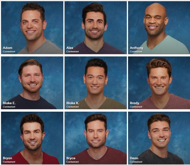 2017 Bachelors 1-9